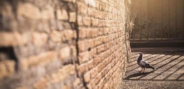 Толкова ли е важно Покаянието?